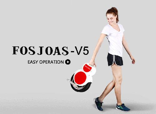 http://www.fosjoas.com/scooters/fosjoas_V5_28.jpg